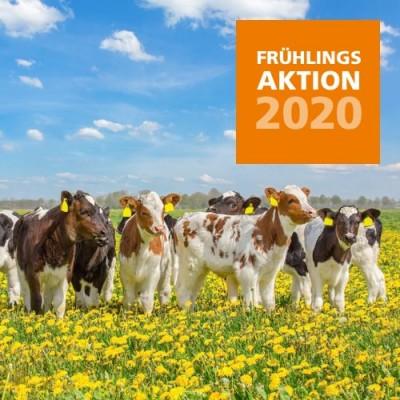 2020 Frühlingsaktion Rind