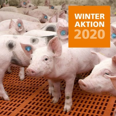2020 Winteraktion