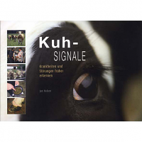 Kuh-Signale
